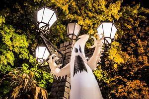 Schaurig-schöne Momente gemeinsam erleben im Heide Park Resort