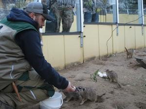 Erlebnisreiche Zooführung im Zoo Neuwied