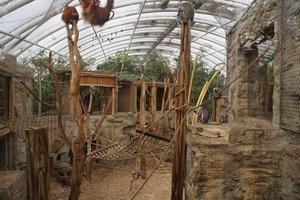 ZOOM Erlebniswelt Gelsenkirchen schließt Tierhäuser