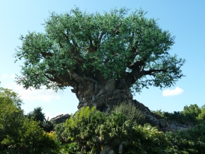 Teaserfoto Disneys Animal Kingdom