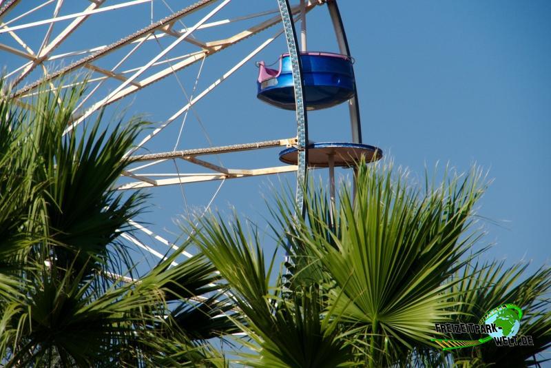 Ferris Wheel - 2014