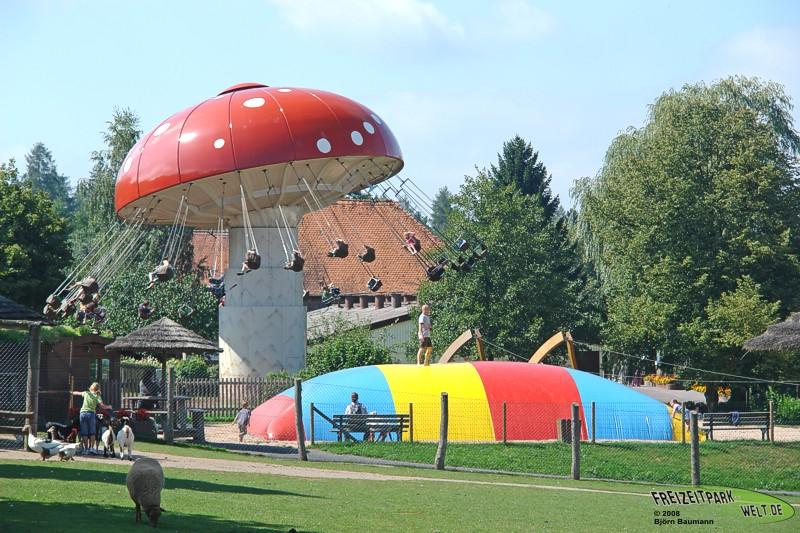 Wellenfliegerpilz - 2008