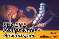 Wir verlosen zusammen mit  dem SEA LIFE K�nigswinter 2x 2 Freikarten f�r einen Besuch im SEA LIFE und  nat�rlich auch zur kostenlosen Sonderausstellung
