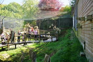 Teaserfoto Affen- und Vogelpark Eckenhagen