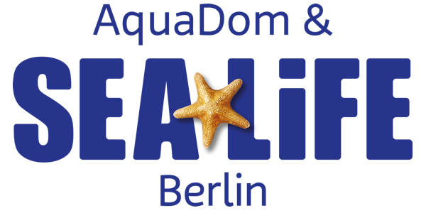 aquadom sea life berlin highlights tipps zum besuch im aquarium. Black Bedroom Furniture Sets. Home Design Ideas