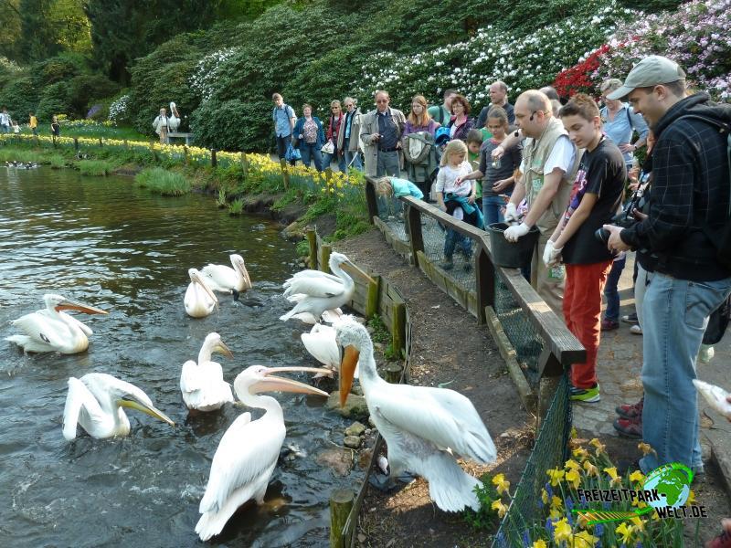 Weltvogelpark Walsrode - 2014
