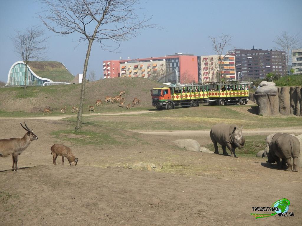Serenga Safari - 2017