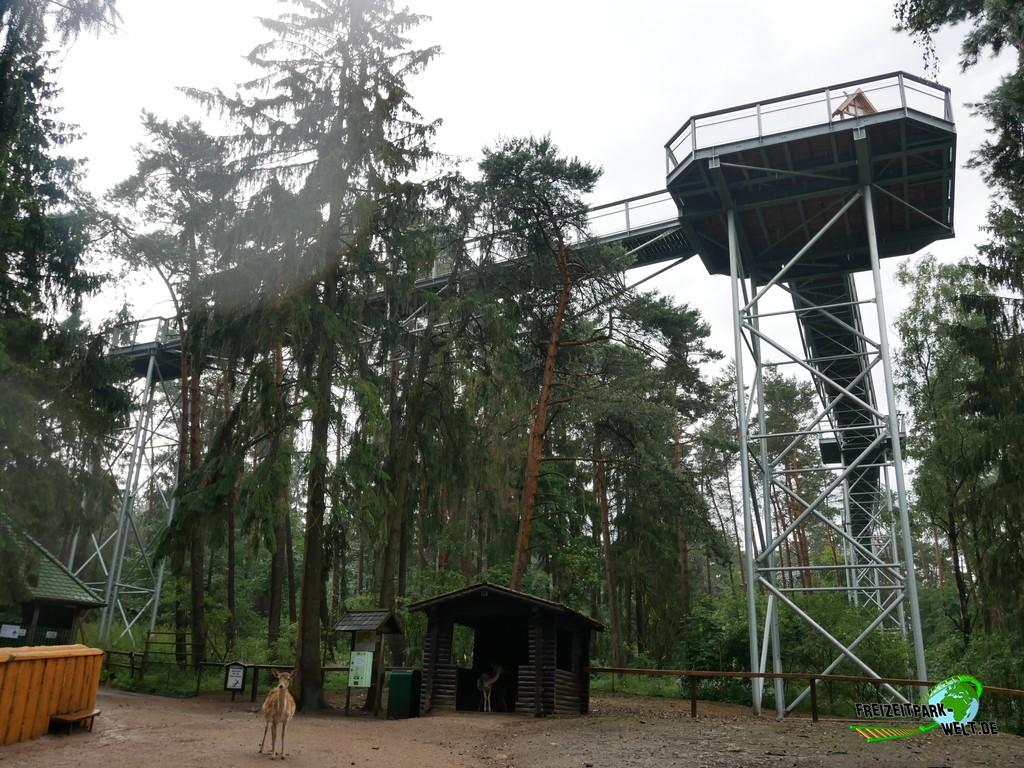 Wildpark Lüneburger Heide - 2020: Ein Highlight direkt am WIldpark ist auch der Baumwipfelpfad