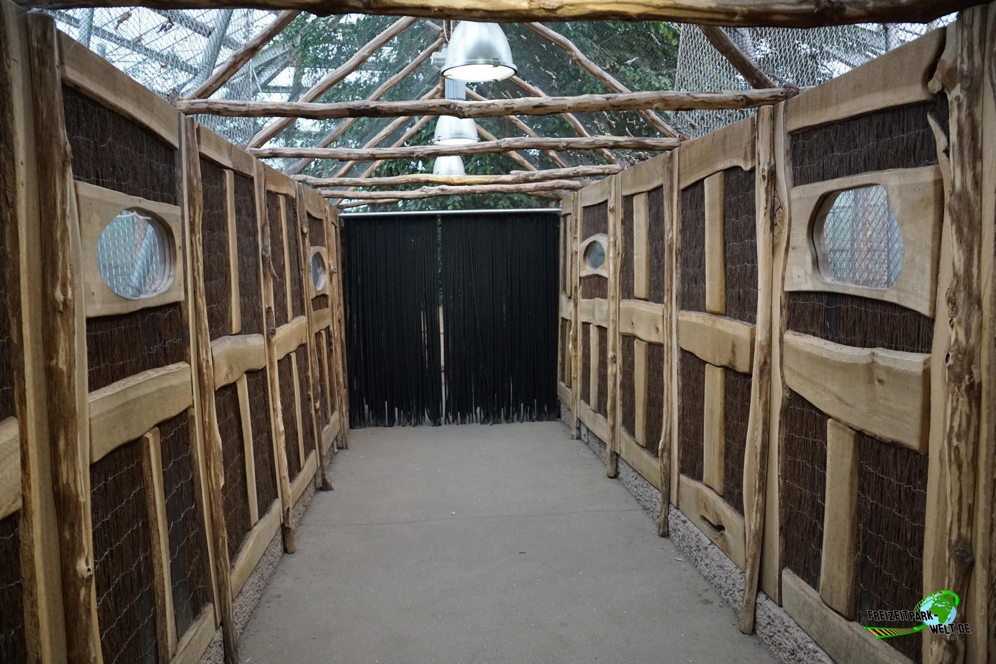 regenwaldhaus rumah hutan zoo dortmund freizeitpark. Black Bedroom Furniture Sets. Home Design Ideas