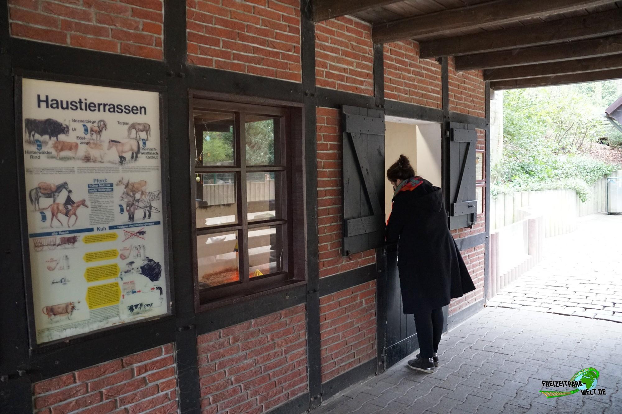streichelzoo zoo dortmund freizeitpark. Black Bedroom Furniture Sets. Home Design Ideas