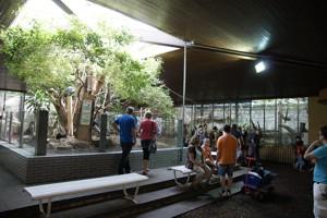 duisburger zoo zoo duisburg freizeitpark. Black Bedroom Furniture Sets. Home Design Ideas