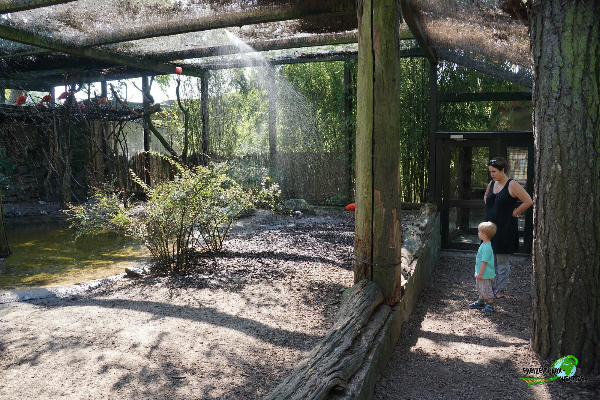 fasanerie mit begehbarer voliere zoo duisburg freizeitpark. Black Bedroom Furniture Sets. Home Design Ideas