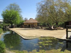 Teaserfoto Zoo Frankfurt