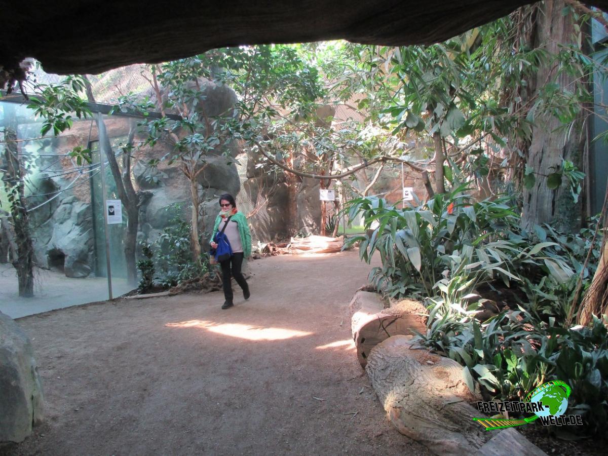 zoo park næstved biograf billund