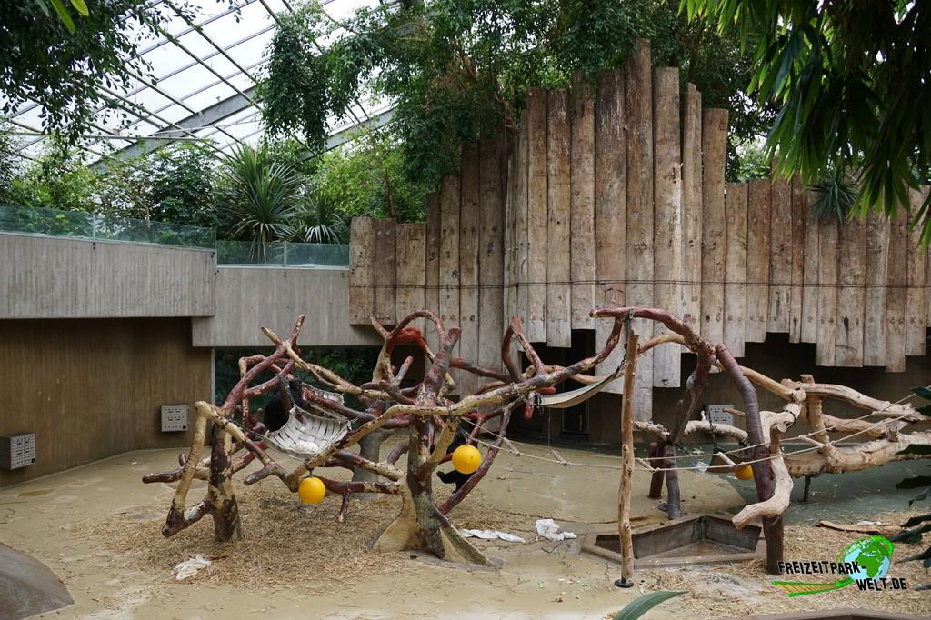 Affenhaus Krefelder Zoo
