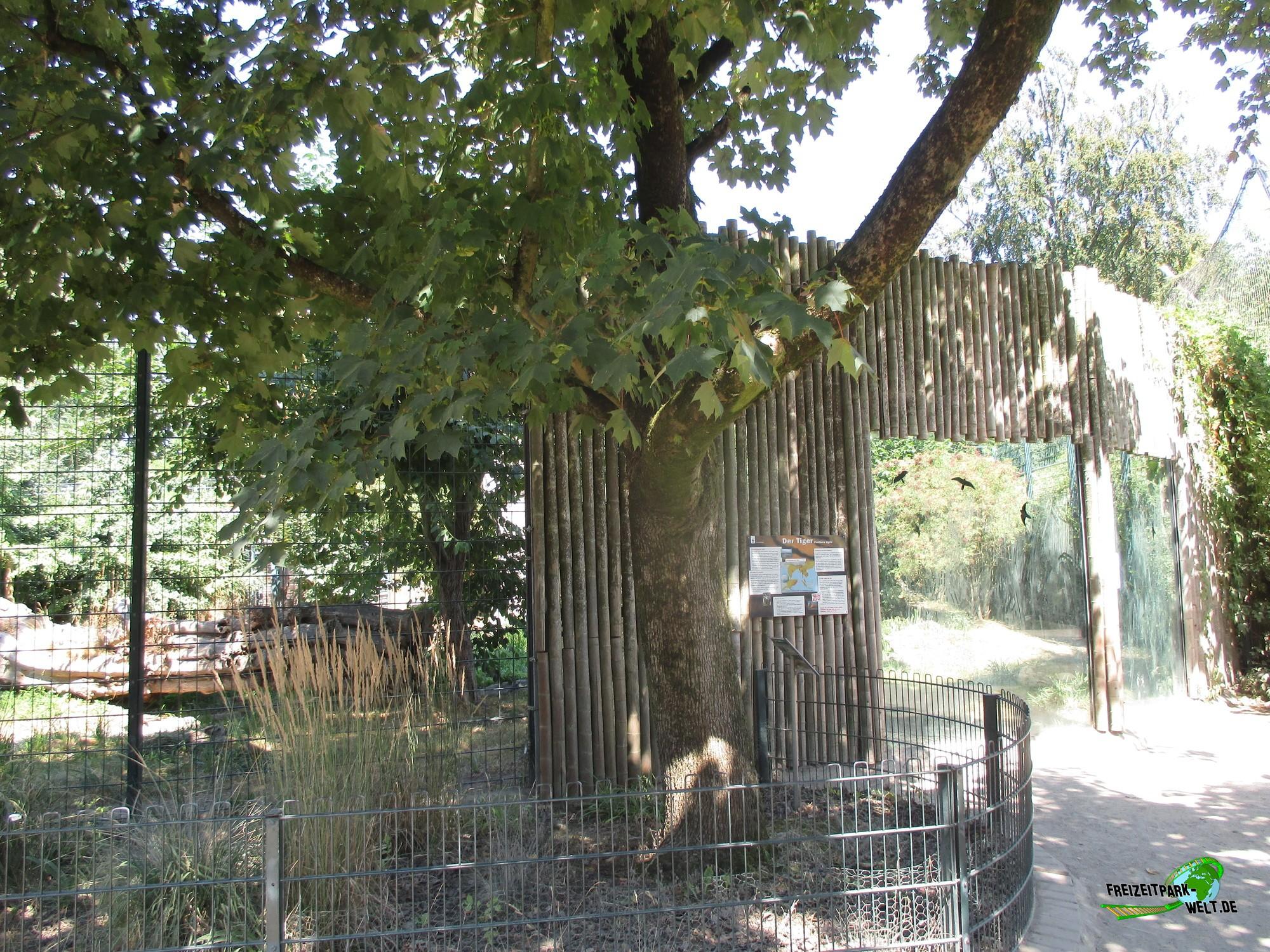 sumatra tiger zoo krefeld freizeitpark. Black Bedroom Furniture Sets. Home Design Ideas