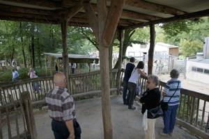 Zoo Osnabrück - Galerie 2012
