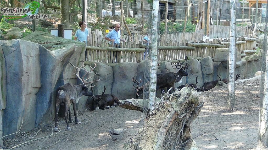 kajanaland zoo osnabr ck freizeitpark. Black Bedroom Furniture Sets. Home Design Ideas