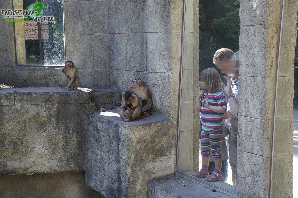 Foto Galerien - Zoo Os...