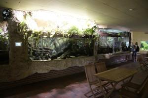 foto galerien zoo osnabr ck freizeitpark. Black Bedroom Furniture Sets. Home Design Ideas
