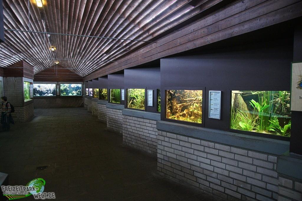 foto galerie 2012 zoo wuppertal. Black Bedroom Furniture Sets. Home Design Ideas